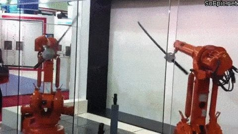 Robotic arms with katanas