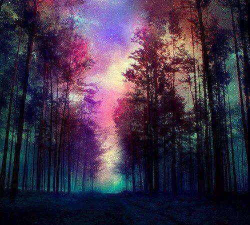 galaxy woods