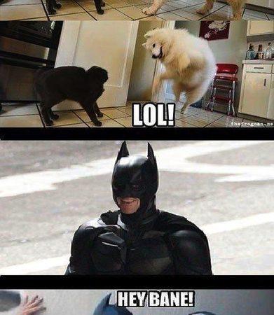 Batman boops Bane and fails at it