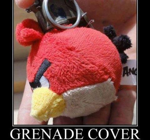 Angry Birds grenade cover
