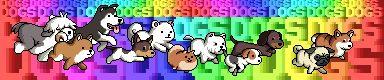 Cute rainbow dogs animation